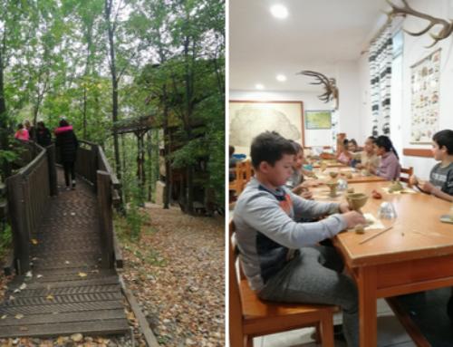 Erdei iskola 2019